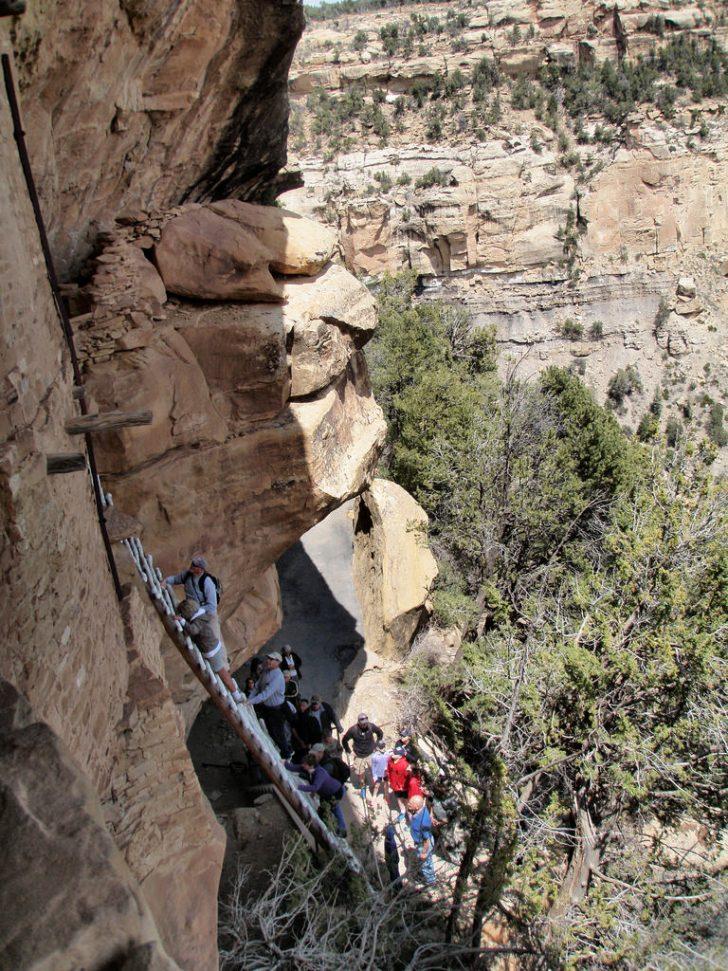 balcony house mesa verde ladder Balcony 15+ Balcony House Mesa Verde Ladder Pictures